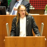 Mdl Olaf Wegner/Foto A.Knipschild
